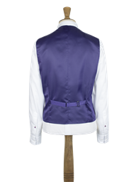 Blue vest with back strap and buckle- currently unavailable